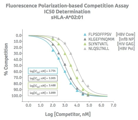 Fluoresence polarization-based competition assay to determine the IC50 of soluble HLA to specific peptides