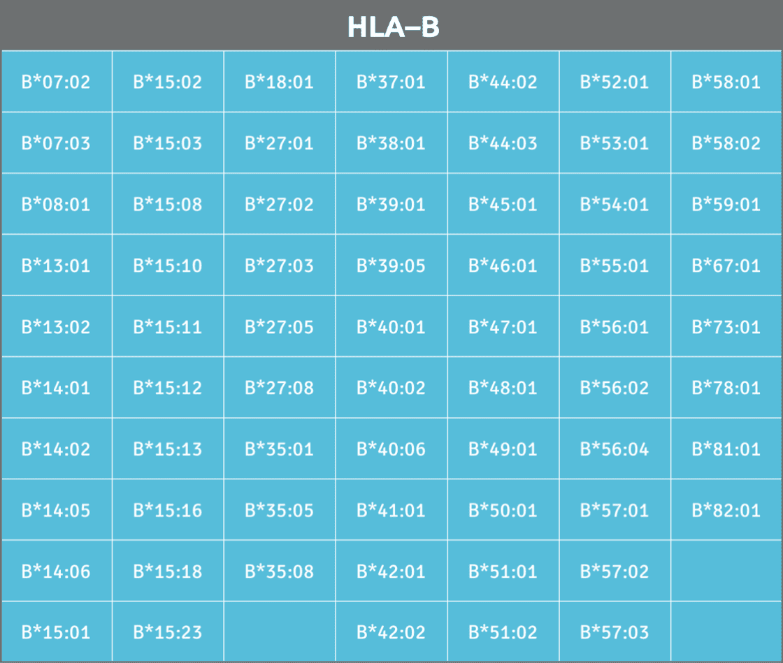 Available HLA-B alleles